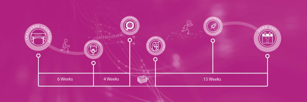 accelerator-programme-timeline