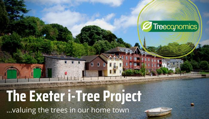 i-Tree-Treeconomics